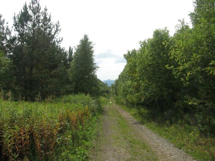 Дорога на Нургуш